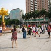 HKZM Bridge marks uptick in unlicensed Macau tours: assn