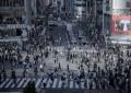 LVS says to focus on Tokyo, Yokohama, skips Osaka IR bid