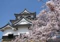 Japan begins setting up casino probity body