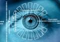 Japanese govt mulls biometrics for casino entry: report