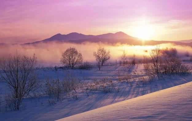 Japan's Hokkaido mulls casino and best location
