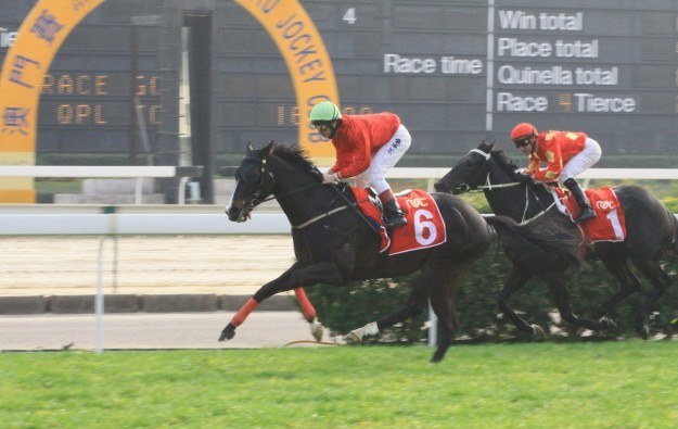 Macau Jockey Club reports wider loss for 2015