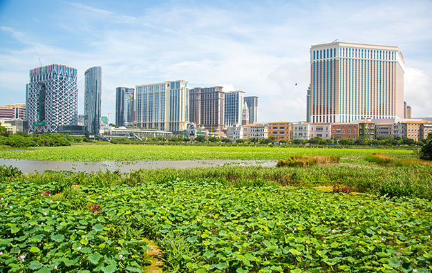 Macau gaming tax revenue up 6pct in 1Q