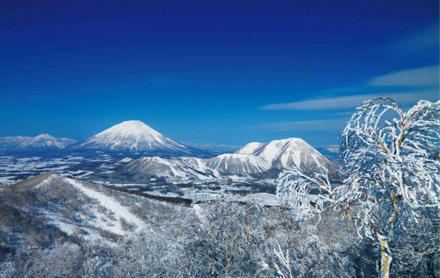 Japanese firms eye Hokkaido casino resort