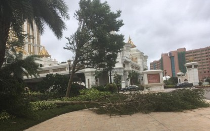 Typhoon Mangkhut cost Macau casinos US$119mln: estimate
